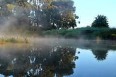 Wingecarribee River #2 (alden0249) Tags: australianlandscape light dawn nature sunrise