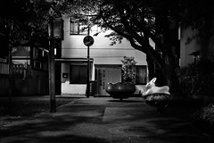 The White Rabbit. (Presence Inc) Tags: night rx1rm2 dark street rx1r abstract angles isolated sony mirrorless architectural texture 35mm spaces transport compact everyday candid tokyo designtheory photography layers design society bw life japan detail