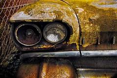 old (try...error) Tags: oldsmobile decay rust abandoned urbex olympus om omd em5 714 panasonic lumix rusty car classic