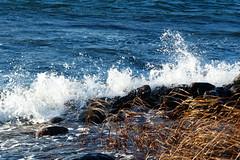 (evisdotter) Tags: water splash strand nature sooc