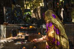 Puja.  Bangalore (Claire Pismont) Tags: asia asie inde india karnataka pismont clairepismont puja temple shrine woman offering hindu hinduism hindouisme bangalore travel travelphotography travelshot