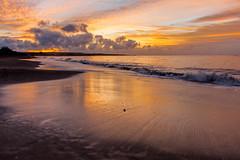 There's a benefit to jet lag. November 24, 2016 (acyee) Tags: sunrise 366 kauai hawaii beach water reflection acyee waimea thanksgiving acyeeexplore