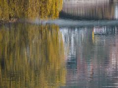 Willow (schauplatz) Tags: deutschland tbingen weide willow tree mirrorimage autumn foliage river fluss