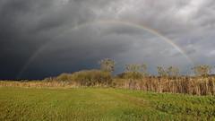 Vorboten... (Evan_1980) Tags: regenbogen wolken sonne uckermark potzlowersee brsc panorama oberuckersee