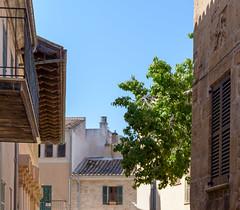 Majorca (Jean-Christophe Guillot (Ptigui)) Tags: alcúdia illesbalears espagne