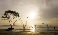 No caption yet (trai_thang1211) Tags: lonelytree gocong vietnam landscape sunrise sun yellow fishingnet beach outdoor fisherman fishermen