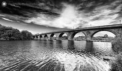 Hexham Bridge (Silent Eagle  Photography) Tags: sep silent eagle photography hexham bridge hexhambridge bw blackandwhite reflection sky clouds sea water seascape landscape plants tree outdoor northeast northumberland silenteagle09 river iso50