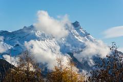 Leysin (bertrandwaridel) Tags: 2016 alps autumn fall leysin november switzerland vaud clouds forest mountains snow trees suisse