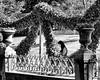 La jeune lisante/Fragonard modern (floressas.desesseintes) Tags: paris jardindeluxembourg jungefrau jeunefemme youngwoman lesen toread lire buch book livre fragonard park parc streetfotografie schwarzweis
