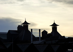The Highland Park Distilllery Rooftops (orquil) Tags: highlandpark malt whisky distillery rooftops roofing roofs coolingtowers ventilationunits pagodas chimneys december afternoon winter silhouette interesting traditional shapes nice sky backdrop mixed clouds holmroad south kirkwall town orkney islands scotland uk unitedkingdom greatbritain orcades memorable eyecatching attractive pleasing whiskey tradespark