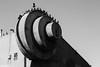 Hitchcock meets Schwarzenegger (Thad Zajdowicz) Tags: blackandwhite birds pigeon sculpture publicart musclebeach venicebeach losangeles california zajdowicz 365 366 availablelight lightroom outdoor outside monochrome black white bw canon eos 5d3 5dmarkiii dslr digital