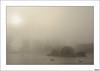 Mejor en compañía (V- strom) Tags: nikon naturaleza nikon2470 nikon50mm nubes niebla sol agua río ave cormorán invierno frío texturas paisajes