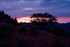 """Yellow & Magenta sunset beyond mount peaks • <a style=""""font-size:0.8em;"""" href=""""http://www.flickr.com/photos/34843984@N07/14924356354/"""" target=""""_blank"""">View on Flickr</a>"""