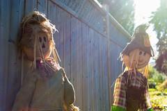 Scarecrow fun (Daddy-David) Tags: autumn fall halloween scarecrow