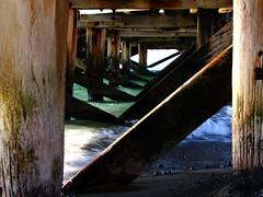 Below (Anja NZ) Tags: newzealand eastbourne oldjetty fujifilmfinepixs100fs ronabeach