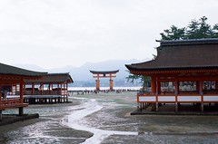 257 (HanPo Lin) Tags: film japan zeiss kodak hiroshima miyajima contax carl  g1 100 f2  45mm planar   ektar carlzeiss contaxg1 g45 kodakektar100 ektar100