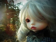 Beautiful Girl (Liz/Daifuku_Darling) Tags: cute outdoors sweet bjd dim trisha balljointeddoll dollinmind