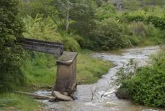A velha ponte resiste... (Mrcia Valle) Tags: bridge trees brazil minasgerais verde green primavera nature water rio gua brasil river spring nikon depoisdachuva natureza ponte rvores oldbridge juizdefora velhaponte d5100 mrciavalle estradadecoronelpacheco