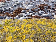 wall, Flaggy Shore