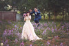 Love, wedding (Ju Link) Tags: link ju ảnh đẹp cưới đại lải aubestudio