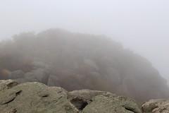 Limited visibility in fog (daveynin) Tags: mountain fog climb nps trail granite shenandoah shenandoahnationalpark oldrag rockscramble deaftalent deafoutsidetalent deafoutdoortalent