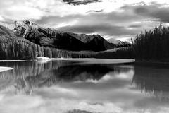 Mirrored (chrisroach) Tags: blackandwhite bw mountain lake canada rockies alberta banff anseladams canadianrockies johnsonlake