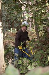 IBM Volunteer Workparty at Oakley Wood, Warwickshire (Warwickshire Wildlife Trust) Tags: autumn england people nature woodland wildlife volunteers conservation coventry warwickshire solihull oakleywood