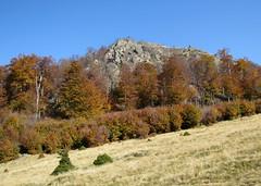 a Szekatura csúcs lábánál / at the foot of the the Secătura mountaintop (debreczeniemoke) Tags: autumn cliff rock forest transylvania transilvania erdély ősz erdő szikla szekatura 1430m canonpowershotsx20is gutinhegység secătura munţiigutin
