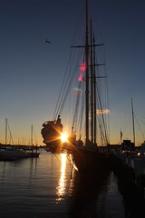 Newport, RI (Read2me) Tags: sun reflection harbor boat superhero flare mast x2 cye gamewinner friendlychallenges thechallengefactory yourockunanimous gamex2winner herowinner storybookotr pregamesweepwinner pregameduelwinner challengeclubwinner