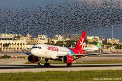 Air Malta Airbus A319     9H-AEL     LMML (Melvin Debono) Tags: 9hael 7d canon aviation airport airplane aircraft spotting debono melvin mla lmml a319 airbus airmalta malta air