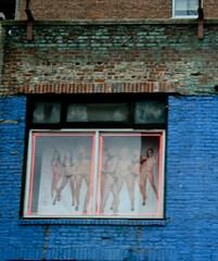 Illusion (Janah Montana) Tags: usa ny newyork window illusion janahmontana