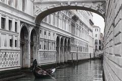 in Venedig (my-glasshouse) Tags: venice gondola florian venezia venedig rialto burano sanmarco hightide aquaalta hochwasser gondole markusplatz gondeln