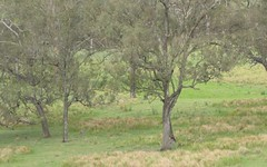Dyraaba Rd, Dyraaba NSW
