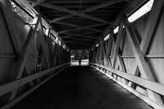 Covered Bridge (Warren Parsons) Tags: bridge light shadow bw geometric monochrome silhouette architecture walking jill geometry engineering tunnel lightandshadow