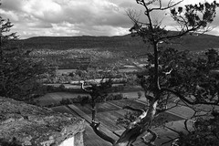 Schoharie Valley Vista (fotofish64) Tags: blackandwhite newyork tree 20d monochrome beautiful clouds contrast rural landscape country dramatic hills vista overlook outcropping capitalregion gnarledtree vromansnose middleburgh farmersfields schoharievalley
