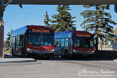 Calgary Transit #8327 & #8220 (S. Neilson Photography) Tags: new canada bus calgary flyer floor low ct alberta transit industries yyc xcelsior
