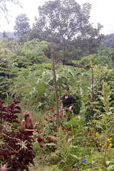 Costa-Rica-35