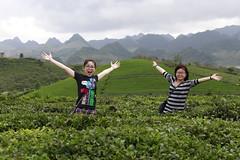 _MG_1107 (liem.ionetour) Tags: travel beautiful landscape nice asia tour du vietnam tay viet mai re gia dep sapa nam bac chau ione maichau dulich mocchau taybac hapdan ionetour