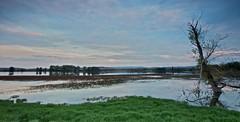 el manto de la laguna (explore) (pascual 53) Tags: