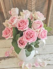 Rose Pitcher Still Life (Andrea Mazzotta) Tags: roses stilllife nikon textures manhattanbeach pitcher flypaper weatheredboards d3x texturetuesdays