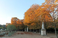 Jardin du Luxembourg - Paris (France) (Meteorry) Tags: park morning trees urban paris france fall nature sunrise automne garden october europe ledefrance jardin arbres luxembourg parc matin jardinduluxembourg 2014 authumn meteorry