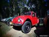 Volkswagen Type 1 Beetle 4WD
