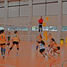 "CADU Voleibol 14/15 • <a style=""font-size:0.8em;"" href=""http://www.flickr.com/photos/95967098@N05/15624382559/"" target=""_blank"">View on Flickr</a>"