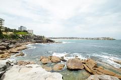 #317 Bondi (Tristan#) Tags: beach water bondi rocks sydney