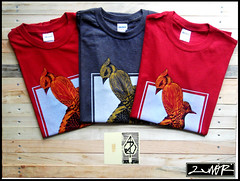 (serigrafia.zenor) Tags: bird lab tshirt uccelli screenprinting serigrafia stampa zenor