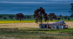 Still standing (_TC Photography_) Tags: country shed australia