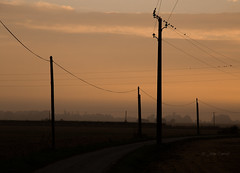 Before the sunrise (J@y C) Tags: landscapes paysage france normandy normandie sunrise sky birds wires jyc canon canoneos6d