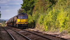 Colas Railfreight Class 60 no 60096 approaches Elton & Orston Station on 23-09-2016 with the Rectory to Lindsey discharged tanks (kevaruka) Tags: eltonorston leicestershire station autumn 2016 september colour colours colasrailfreight colas freighttrain dmu countryside eastmidlands nottinghamshire trains train transport trainstation railway networkrail britishrail class60 class56 england yellow orange flickr frontpage thephotographyblog ilobsterit stock canon canoneos5dmk3 canon5dmk3 canonef100400f4556l 5d3 5diii 5d 5dmk3 composition locomotive heritage historic lines leadinglines ruleofthirds boobs milf sexy wife scenic scenery trees green 60096