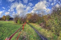 Along the fence (KonHenrik) Tags: d7100 danmark denmark amager copenhagen kbenhavn hdr 2016 samyang8mm autumn