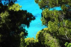 Blue through the Green (Vojinovic_Marko) Tags: nikon d7200 greece grka lefkada outdoor nature hellas trees sea